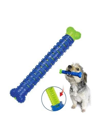 JBL Köpek Diş Temizleme Oyuncağı Chewbrush Renkli